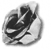 19-1026