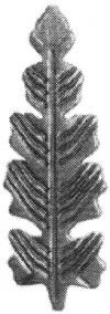 19-1032