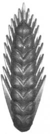19-1270