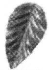 19-1304