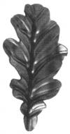 19-2106