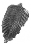 19-2200