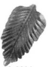 19-2206