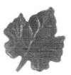 19355